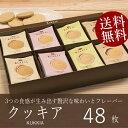 送料無料 クッキー ギフト 赤い帽子 クッキア 48枚 (個別送料込み...