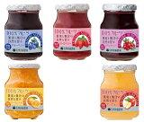 【宅配便送料無料】信州須藤農園 砂糖不使用 100%フルーツジャム 選べる6個セット 185g×6個   【福袋 スドージャム 100%フルーツ】