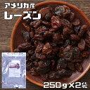 【メール便送料無料】 レーズン アメリカ産 250g×2袋 ドライフルーツ 世界美食探究