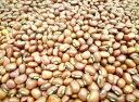豆力 豆専門店の赤飯用ささげ 10kg
