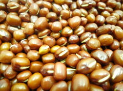 小豆よりも粒が大きめ♪栽培履歴を管理してます。【送料無料】豆力 契約栽培十勝産 大納言 3...