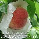 産地直送 【桃】 古屋さんの桃 もも 約3kg 9〜11玉
