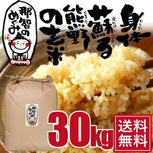 玄米◆30kg◆世界遺産の地、熊野のコシヒカリ28年度産『那智のめぐみ』【送料無料】