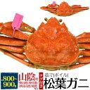 【釜茹】松葉ガニ 姿 (ズワイガニ)【800g〜900g×1...