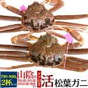 【活蟹】生 松葉ガニ 姿 (ズワイガニ) 【700g〜800...