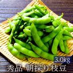 朝採り枝豆 秀品 3.0kg 【早朝収穫 当日直送 送料無料】【期間限定】【レンジパックで簡単調理】