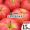 【発送:10月下旬〜】 青森県 りんご 訳あり 15kg ジョナゴールド 家庭用 わけあり 林檎 リンゴ 赤りんご 果物 フルーツ 15キロ 自宅用 産地直送 送料無料