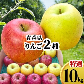 赤りんご・青りんごの違いは?