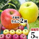 青森県 りんご 赤りんごと青りんごの 詰合せ 5kg 家庭用 訳あり 赤りんご 青りんご フルーツセット 林檎 さんふじ 蜜入り おまかせ 5キロ 送料無料 詰め合わせ