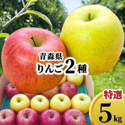 りんご 詰め合せ 5kg 青森県 ギフト 赤りんご 青りんご 優秀 林檎 さんふじ 蜜入り リンゴ おまかせ 農家直送 5キロ 送料無料 プレゼント のし対応 贈り物 敬老の日