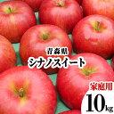 【発送:10月下旬〜】 青森県 りんご 訳あり 10kg シナノスイート 家庭用 わけあり 林檎 リンゴ 赤りんご 果物 フルーツ 10キロ 自宅用 産地直送 送料無料