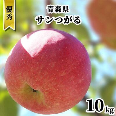 【発送:9月中旬〜】青森県 りんご ギフト 10kg サンつがる 葉とらず 赤りんご 林檎 はとらず リンゴ つがる 津軽 果物 フルーツ 10キロ 産地直送 送料無料 プレゼント 贈答用 敬老の日