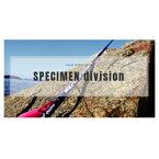 ブリーデン スクィッドゲーム SWG-SPECIMEN88swingtop TORZITY スペシメン 88 スイングトップ トルザイティー スクイッド スキッド