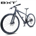 BXT 29inch Bike New Full Carbon Mountain Bicycle 29er Axle Thru Frame 11*1 Speed T800 MTB