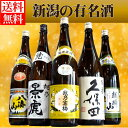福袋 第3弾 新潟日本酒 辛口飲み比べセット 1.8L×5本