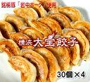 餃子のやまちゃん にんにくたっぷりスタミナ餃子60個( 冷凍 生餃子 )  にんにく 餃子 冷凍 肉 スタミナ 生餃子 本格 地場食材 ビール 餃子パーティー