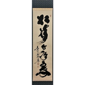 Tea utensil hanging scroll Matsuki 1000 years green Daitoku-ji Koumein Taigen Kobayashi Handwritten