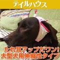 """たれ耳犬用耳上げサポーター""""たれ耳アップだワン!伸縮性タイプ""""大型犬"""
