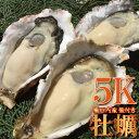 加熱用 殻付き牡蠣5kg前後 岩見漁港産 約45個〜55個 牡蠣 鍋 お試し 海鮮 魚介 B...