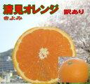 清見オレンジ 5kg 愛媛産 送料無料  北海道・沖縄 送料別途<少し 訳あり>