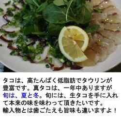 生真たこ1.5kg広島産もしくは瀬戸内海産ボイルの仕方レシピ付き【半夏生タコ生たこ】