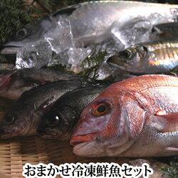 送料無料おまかせ冷凍鮮魚セット下処理後、真空に近い状態にパックレシピ付き(魚ボックスBOX真空生詰め合わせ)
