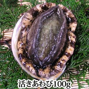 瀬戸内海産 活き アワビ ( あわび )1個 100g 黒あわび 鮑 刺身 活きたまま発送 バーベキュー