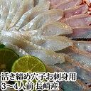 長崎産 穴子 刺身 用 ( あなご アナゴ )(1尾300g前後 国産 活き締め 生 )3〜...