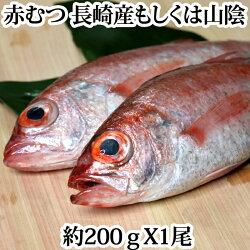 赤むつ(のどぐろ・ノドグロ)長崎対馬産もしくは、山陰産200g