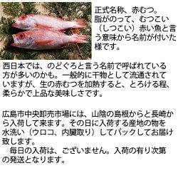 赤むつ(のどぐろノドグロ)長崎対馬産もしくは山陰産200g生