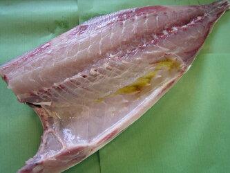 ぶり(養殖鹿児島産もしくは瀬戸内産)約5kgの半身カマ付き(ぶり鰤)