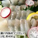マコガレイ 400g 瀬戸内海産 ( アマテガレイ カレイ まこがれい マコガレイ 刺身 )