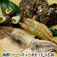 海鮮バーベキューBセット(夏は岩牡蠣3個、冬は牡蠣、牡蠣のないシーズンは殻つきホタテ3個)・サザエ3個・有頭エビ(解凍)3個・真いかの一夜干し(解凍)1枚)【smtb-KD】【02P06jul13】