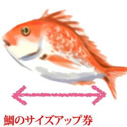 鯛のサイズアップ券!『祝い膳セット内の鯛専用』100gアップごとの金額になります。