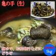 亀の手 (生)1kg( カメノテ ペルセベス かめのて )愛媛県産、香川県産、愛知県産のいずれか( 塩ゆで、お味噌汁、バーベキューにも)