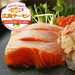 広島サーモン1kg(春季限定)カットサービス付き!お刺身、フライ、ソテー、塩焼きなど