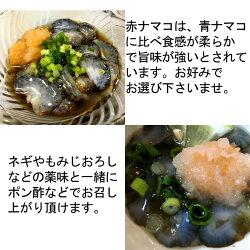 青なまこ(瀬戸内海産ナマコ)900g(300gX3袋)