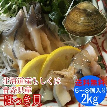 殻付き ホッキ貝 ( 活き ほっき貝 北寄貝 ホッキガイ )2kg(5〜8個)
