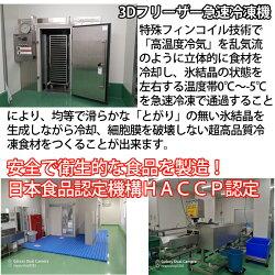 トリガイ(とりがいとり貝)(大阪湾国産)6枚X23D冷凍