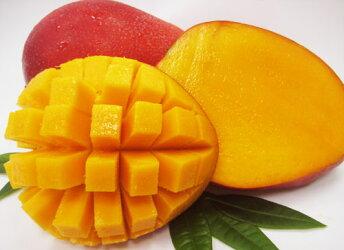 最高級台湾産アップルマンゴー