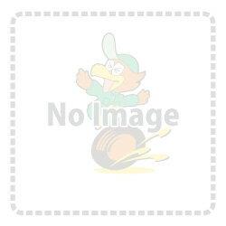 ターボホースキット TURBO HOSE KIT AUDI S6 4A-C4/2.2T系にお勧め! [標準カラ...