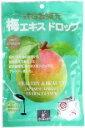 ■【ムソー】田上元商店 梅エキスドロップ65g