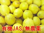 (国産・有機JAS)耕七郎おじいちゃんのレモン約5kg※サイズ混合