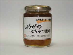 Ginger honey pickle 280 g * package changes planned