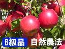 【B級品】竹嶋有機農園の自然農法りんご紅玉 <「4.5kg箱...