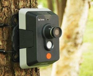 バードウォッチカム(Bird watch cam)