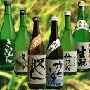 【 送料無料 日本酒 飲み比べセット】蔵元自慢の純米酒ばかりをチョイスした6本セット!お燗酒...