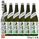 【ケース販売】日本酒 大吟醸 越路吹雪(こしじふぶき) 五百...