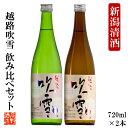 父の日 日本酒 飲み比べ 越路吹雪 720ml×2本 送料無...
