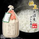 【新米】極上 魚沼米 コシヒカリ 白米 5kg 令和3年産